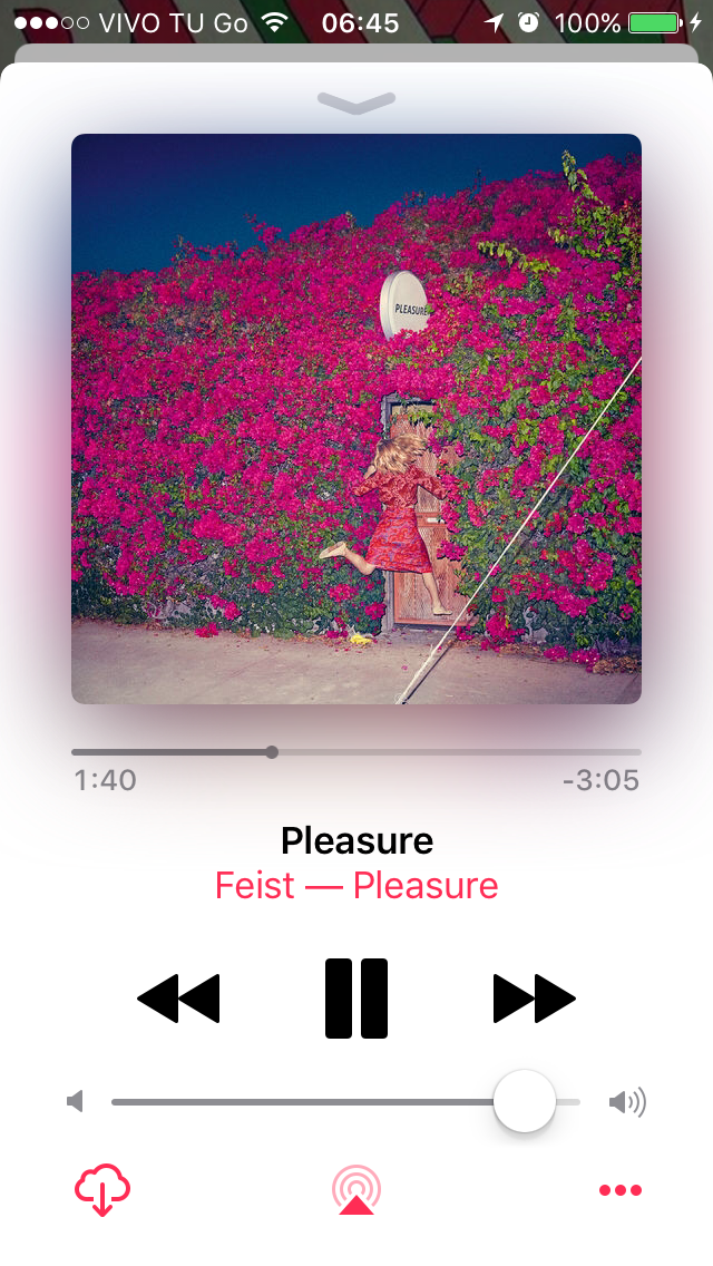 "Feist, ""Pleasure"""